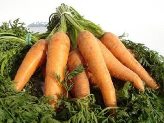 Очень полезная морковь? А в чем ее полезные свойства?