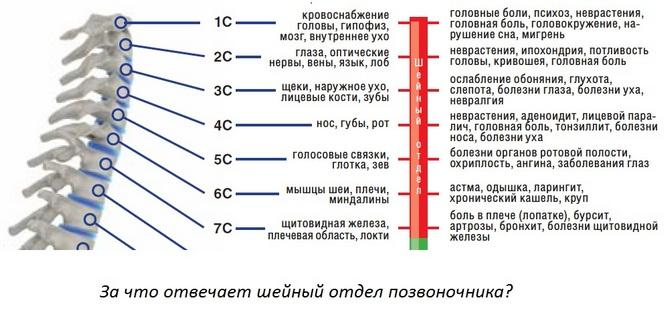 Симптомы температура боль в спине частое мочеиспускание