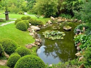 Искусственный водоем в вашем саду