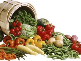 Биогенная диета