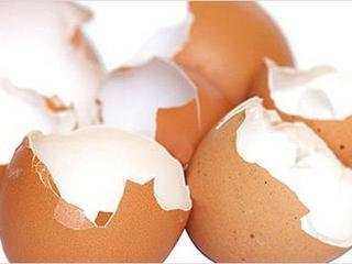 Остеопороз: использование яичной скорлупы, как источник кальция