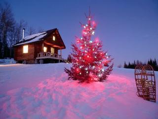 Как организовать встречу Нового года и Рождества на природе