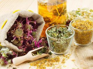 Фитотерапия: лекарственные растения для вашего здоровья