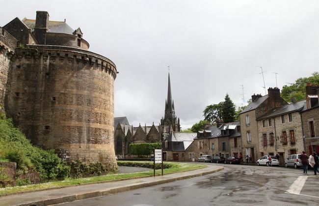 Французское слово «фужер» означает папоротник.