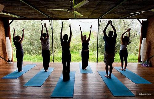Анна шейн йога инстаграм