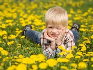 Весенние травы для вашей красоты и здоровья