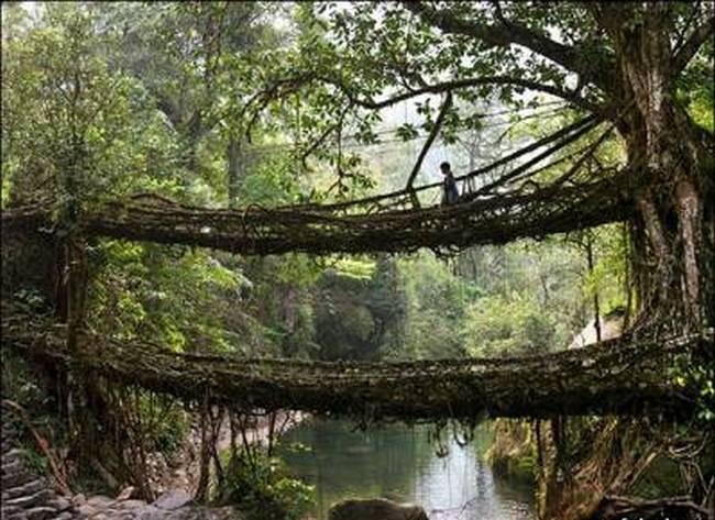 Мосты призраков и мосты-убийцы 6710099-0304