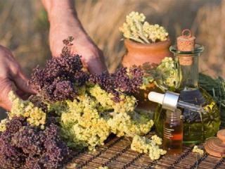 Рецепты народной медицины от бессонницы и простуды