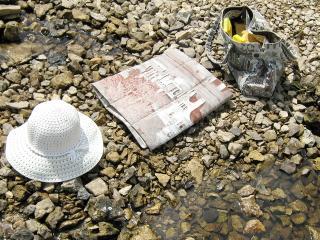 Комплект для пляжа: коврик из саквояжа